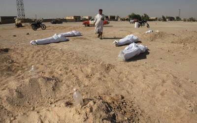 Fallen Mahdi Fighters