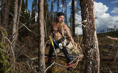 The Tree Planters—Franco Berti (2016)