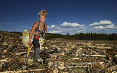 The Tree Planters—Taviana MacLeod (2017)